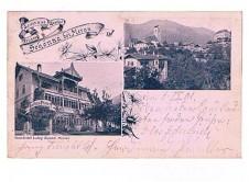 ANSICHTSKARTE SCHENNA GRUSS AUS SCHÖNNA BEI MERAN GASTHOF SÜDTIROL GELAUFEN 1901